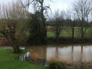 Pond flooding onto the lawn